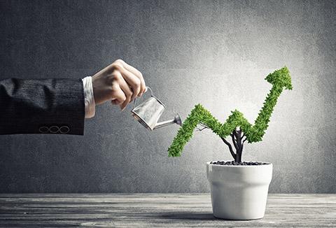 Experts conseillers en placement et investissement financiers, nous vous proposons des placements de type assurance-vie, contrats de capitalisation, SCPI...